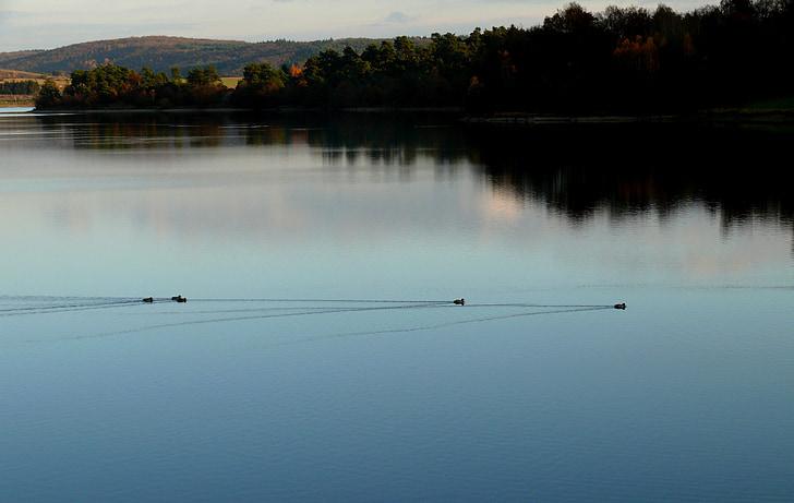 Lago, abendstimmung, água, pôr do sol, paisagem