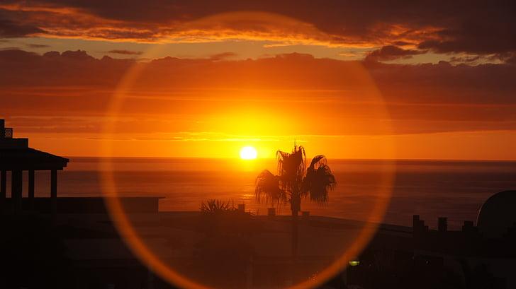 soluppgång, Fuerte ventura, stranden, ön, resor, Holiday, Palm