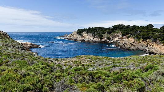 du Pacifique, Côte, réservé (e), paysage, océan