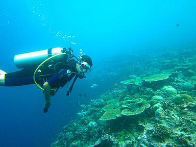 ronjenje, Maldivi, more, oceana, ronilačkom odijelu, Dubinsko ronjenje, škola ronjenja