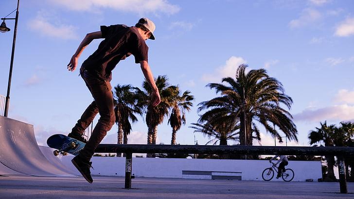 mode de vie, Parc, planche à roulettes, skateur, planche à roulettes, skatepark, patineur