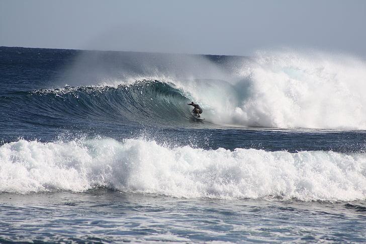 escull, navegar per, ones, surf, oceà, Mar, platja