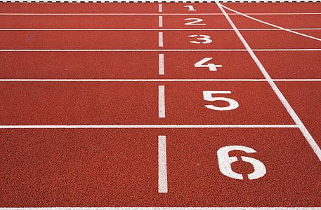pista, camp, cursa, corrent, esports, números, Inici