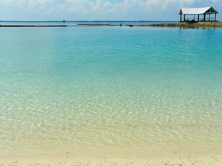 bonica, aigües clares, blau, platja, Costabella complex, Cebu, Filipines