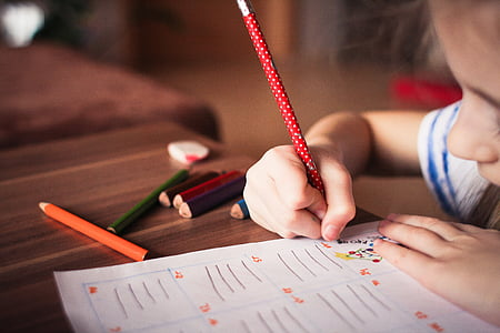 child, kid, play, tranquil, study, color, write
