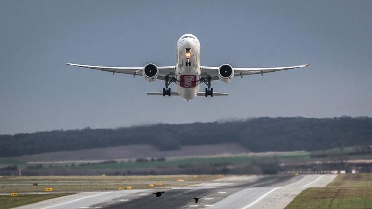 aeronaus, l'aeroport, sortida, Inici, volar, enlairar-se, avió comercial