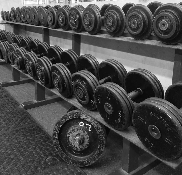 svars pacelšanas, fitnesa, uzdevums, muskuļu, stiprums, pievilcīgs, hantele