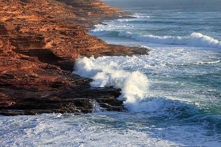 Costa, ona, esprai, navegar per, oceà, platja, l'aigua
