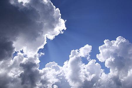 white cloud, sky, beautiful sky, cloud - sky, backgrounds, weather, cloudscape