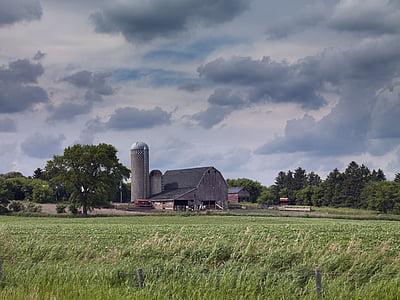 farm, agriculture, green, rural, food, harvest, summer