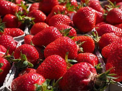 maduixes, vermell, afruitat, deliciós, dolç, fruita, aliments