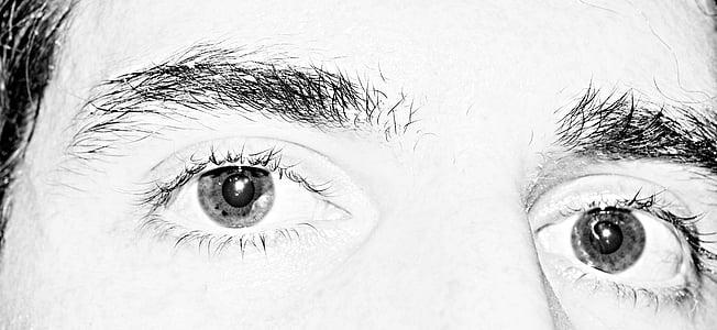 eye, eyebrow, monochrome, face, man, staring, stare