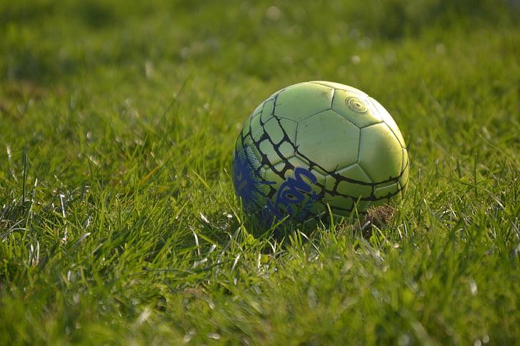 football, ball, grass, sport, rush, play, soccer