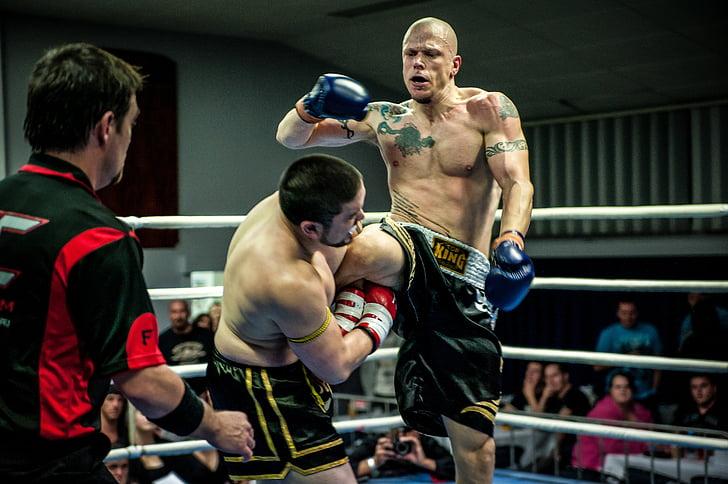 Muay tailandès, lluita tailandès, fleur de tac, gimnàs, esport, Marcial, lluita