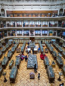 muuseum, näitus, arhitektuur, lakke, Palace, Briti Muuseum, Madrid