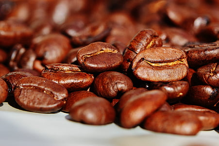 kopi, biji kopi, kafe, panggang, kafein, coklat, aroma