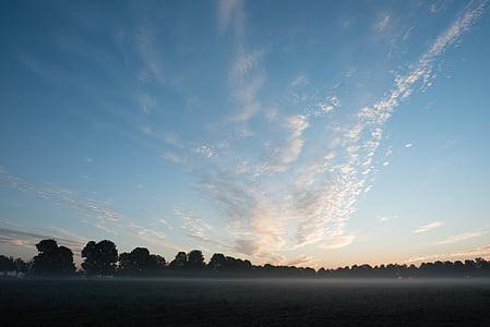 sunrise, sky, field, trees