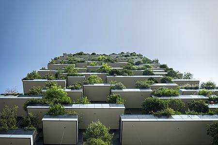 Korterelamu, arhitektuur, rõdu, hoone, roheline arhitektuur, suure tõusu, elamu