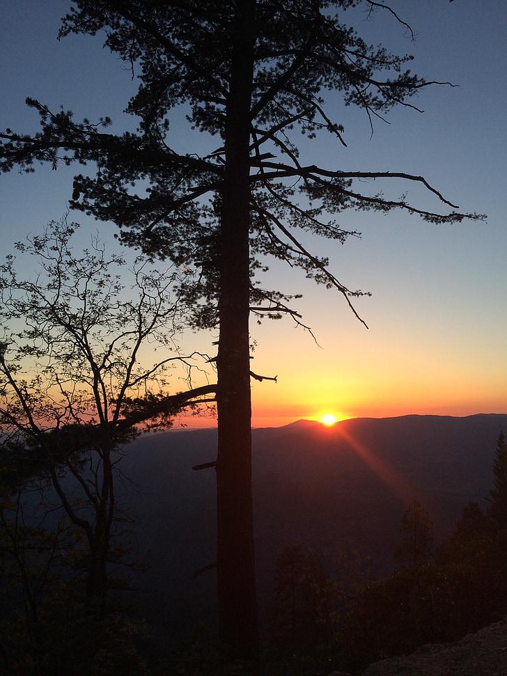 solnedgång, träd, naturen, solen, landskap, siluett, kvällen