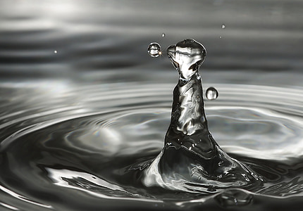 vee, laine, High-hüpped vee tilk, vee suudlused vee, tilk vett