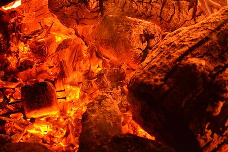 brases, foguera, resplendor, foc, flama, cremar, fusta