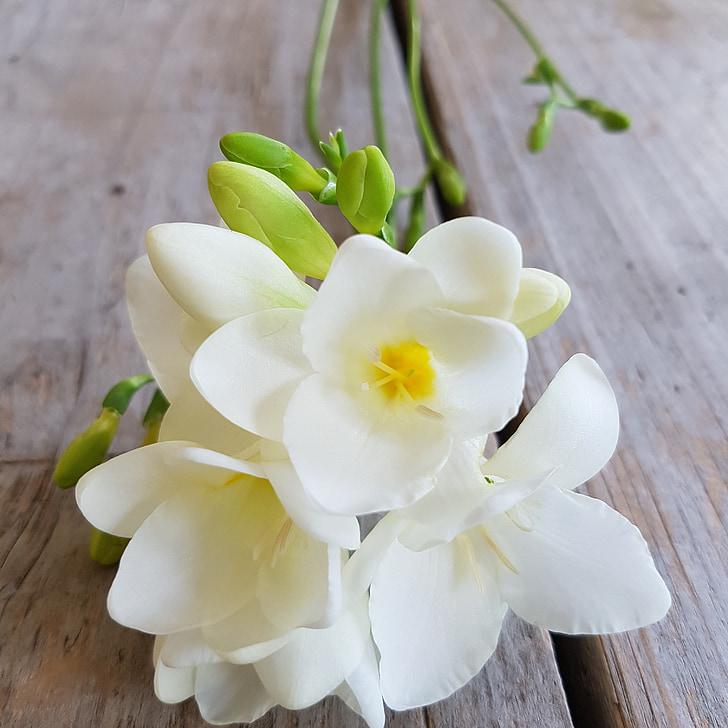 SIA, gėlės, gėlių puokštė
