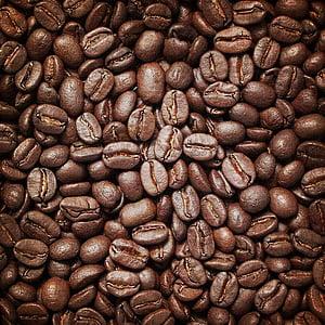 φόντα, φόντο, δομή, καφέ, Περίληψη, μοτίβο, υφή