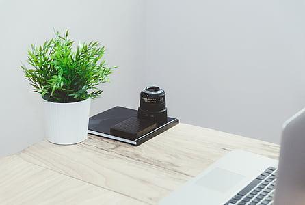 business, work, mockup, slider, blog, website, stock
