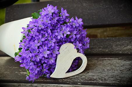 Test, porpra flor, dia de la mare, cor, Arranjament, violeta, flors