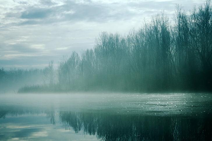 härmas, udune, udune, jõgi, talvel, külm, Frost