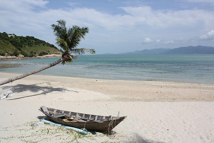 caribbean, sea, hammock