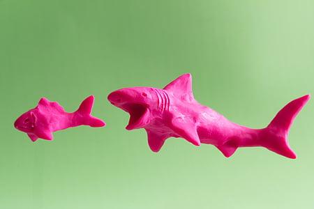fish, shark, clay, modeling, handmade, hunting, predator
