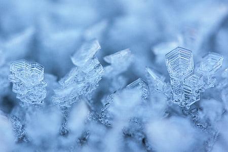 hoarfrost, eiskristalle, winter, snow, cold, frozen, crystals