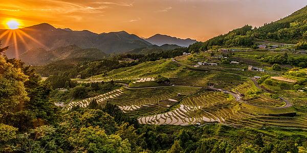 landscape, sunset, rice terraces, tradition, maruyama senmaida, kumano ancient road, may