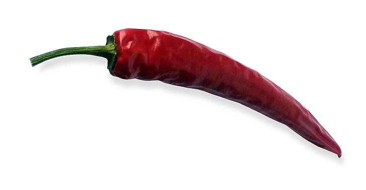čili, čili paprika, Crveni, oštar, vruće, svjetlo, sjena
