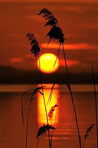 posta de sol, Llac, Llac de garda, paisatge, posta de sol sol, nit, llacs