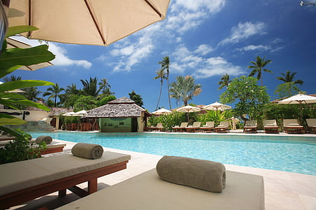 strandstoler, skyer, Hotel, idyllisk, fritid, luksus, Palm