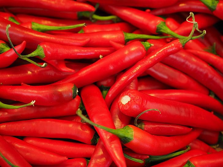 čili, Crveni, oštar, začin, ljute papričice, feferoni, mahuna