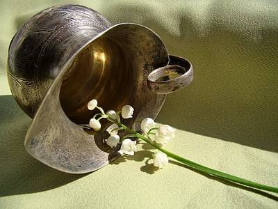 flowers, lily of the valley, spring, macro photography, closeup, still life, pitcher