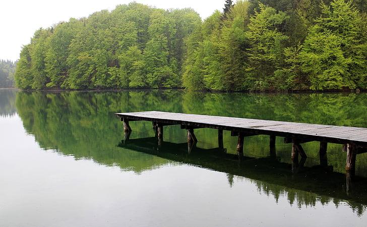 lake, waters, web, mood, still, silent, rest