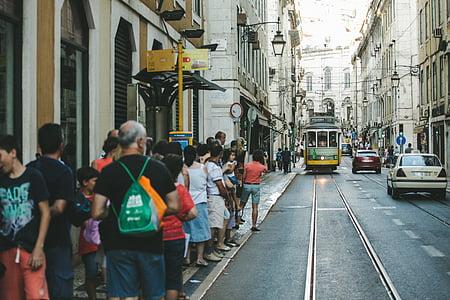 people, standing, gray, asphalt, road, beside, concrete