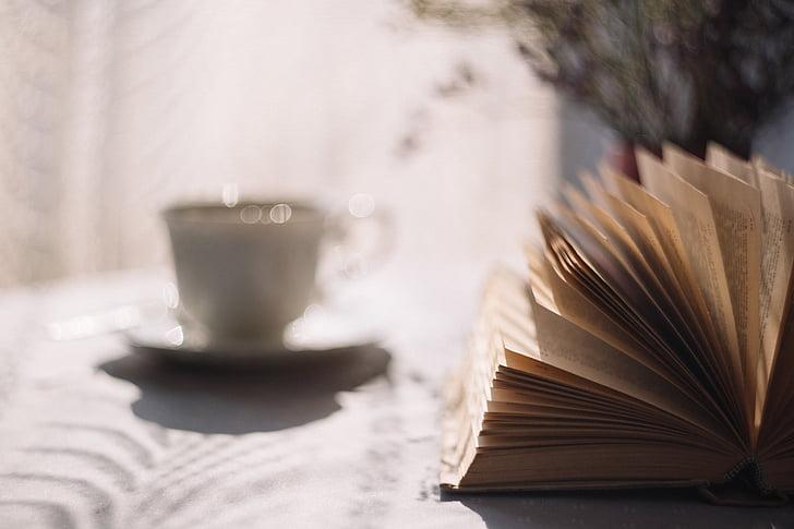 boek, koffie, Beker, kennis, literatuur, macro, Mok