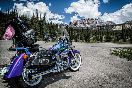 custom, paint, motorcycle, wyoming, mountain, summer, purple