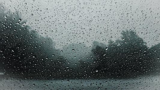 raindrops, raining, rain, wet, water, weather, nature
