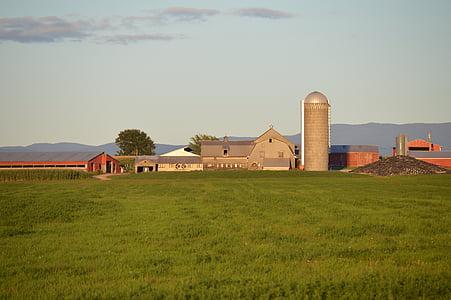 barn, farm, field, agriculture, farming, country, farmland