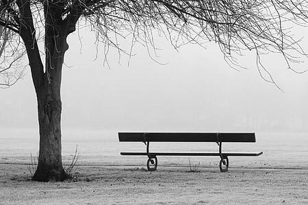 Осінь, лавки, падіння, туман, Туманний, краєвид, Мряка