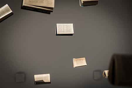 buku, Pameran, komposisi, Polandia, zeromski, Kielce, ciekoty