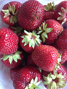 maduixes, l'estiu, dolç, maduixa, fruita, fresc, baies