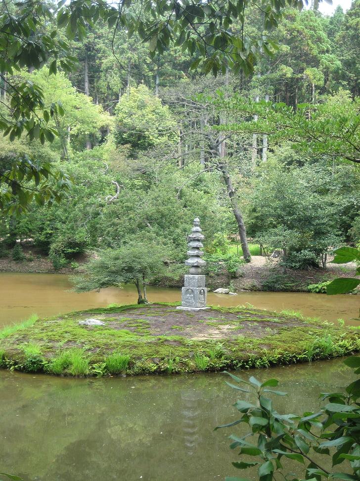japanese, have, japan, natural, tree, nature, green Color