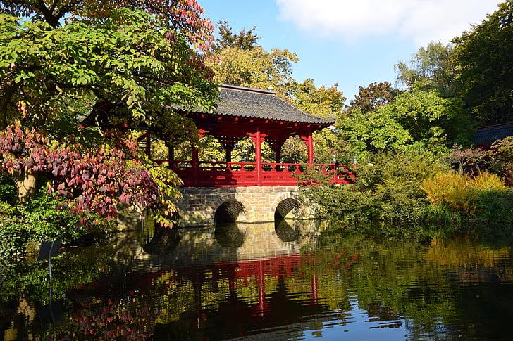 japan, garden, park, japanese garden, pond, relaxation, autumn